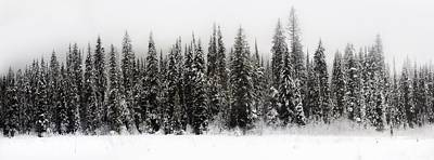 Winter Scene // Whitefish, Montana  Print by Nicholas Parker