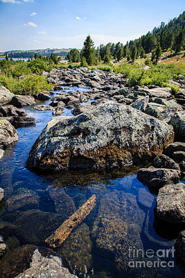 Trout Photograph - Alpine Stream Beartooth Mounain Range by Edward Fielding