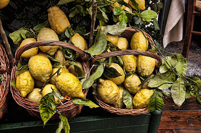 Amalfi Lemons Print by Antique Images
