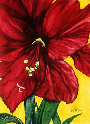 Spring Bulbs Painting - Amaryllis In Red by Lil Taylor