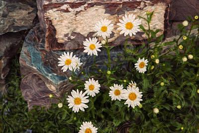 Mazama Mixed Media - Amazing Daisies by Omaste Witkowski