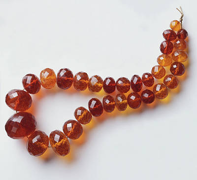 Necklace Photograph - Amber Bead Necklace by Dorling Kindersley/uig