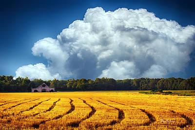Barn Photograph - Amber Fields by Barry Jones
