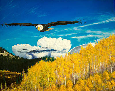 American Eagle Painting - American Bald Eagle Original Oil Painting 16x20in by Manuel Lopez