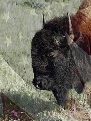 Bison Digital Art - American Bison by Ernie Echols