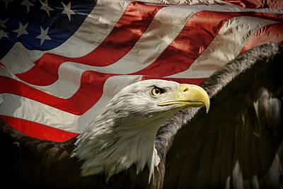 American Eagle Print by Jai Johnson
