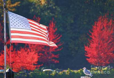 American Fall Day Print by Ronnie Glover