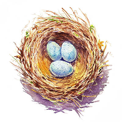 Robin Painting - American Robin Nest by Irina Sztukowski
