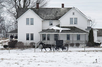 Amish Buggy And Amish House Print by David Arment