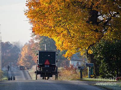 Amish Photograph - Amish Buggy Fall 2014 by David Arment