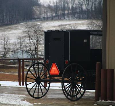 Amish Buggy In Winter Print by Dan Sproul