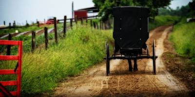 Amish Farmer Photograph - Amish Buggy On Dirt Road by Dan Sproul