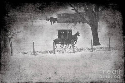 Amish Buggy Winter January 2014 Print by David Arment