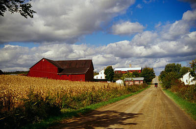 Country Dirt Roads Photograph - Amish Farm Buildings And Corn Field by Panoramic Images
