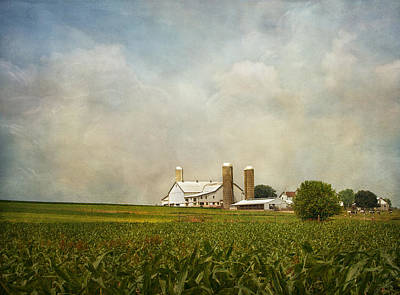 Amish Photograph - Amish Farmland by Kim Hojnacki