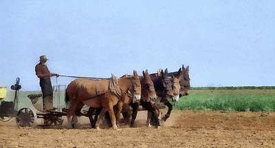 Donkey Mixed Media - Amish Man Plowing The Fields by Dan Sproul