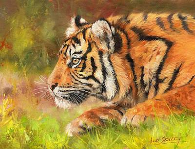 India Wildlife Painting - Amur Tiger 2 by David Stribbling