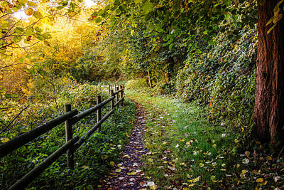 Landscape Photograph - An Autumn Walk by Pati Photography