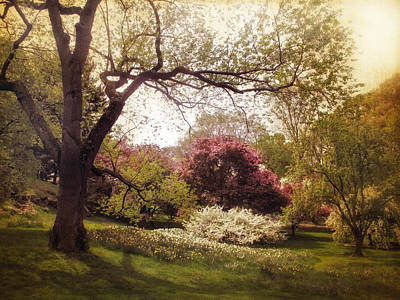 Spring Landscape Digital Art - An Early Spring by Jessica Jenney