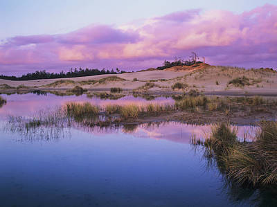Oregon Dunes National Recreation Area Photograph - An Ephemeral Pool Reflects The Morning by Robert L. Potts