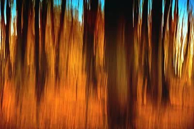 An Impressionistic In-camera Blur Print by Rona Schwarz
