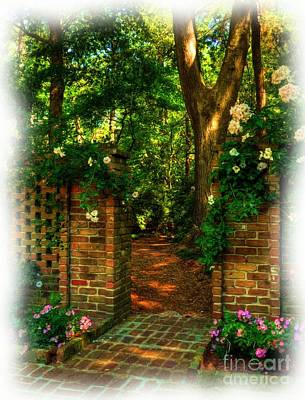 Tree Roses Photograph - An Open Gate by Mel Steinhauer
