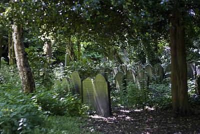 Mortal Photograph - Ancient Graves by Georgia Fowler