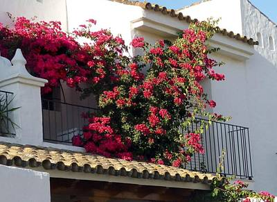 Bougainvilla Photograph - Andalusian Balcony by Jo Ann