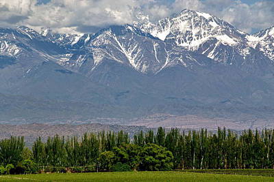 Andes Mountains And Vineyards Print by Kevin Bain