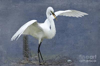 Egret Digital Art - Angel Wings by Betty LaRue