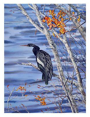 Anhinga Painting - Anhinga by Jim Melton