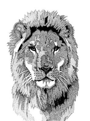 Lion Mixed Media - Animal Prints - Proud Lion - By Sharon Cummings by Sharon Cummings