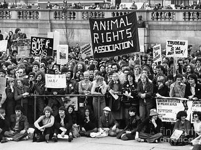 Animal Rights Demonstration London Print by David Fowler
