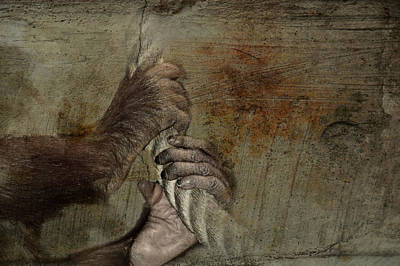Orangutan Mixed Media - Animal Welfare by Heike Hultsch