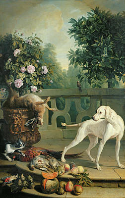 Animals, Flowers And Fruits Oil On Canvas Print by Alexandre-Francois Desportes