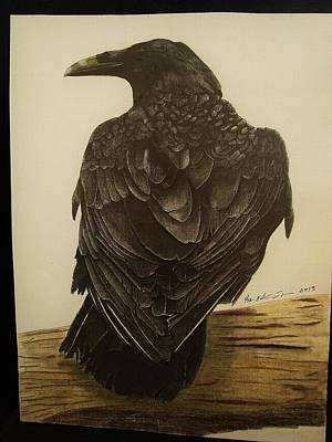 Animals Print by Per-erik Sjogren