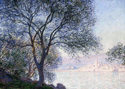 Edge Painting - Antibes Seen From The Salis by Claude Monet