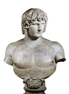 Statue Portrait Photograph - Antinous Or Antino�s. 2nd C. Bc. Roman by Everett