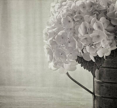 Kim Photograph - Antique Hydrangea by Kim Hojnacki