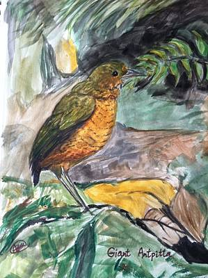 Antpitta Print by Asuncion Purnell