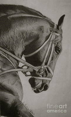 Race Horse Drawing - Any Given Saturday by Whitney Valls