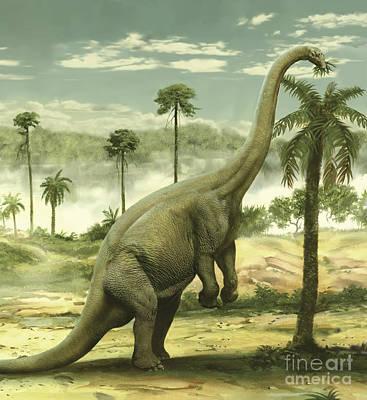 Reaching Up Digital Art - Apatosaurus Feeding On The Leaves by Jan Sovak