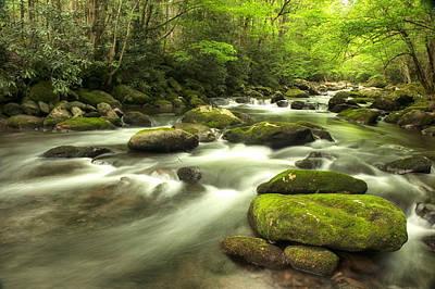 Appalachian Spring Stream Print by Phyllis Peterson