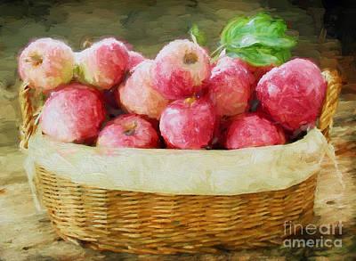 Apple Harvest Print by Darren Fisher