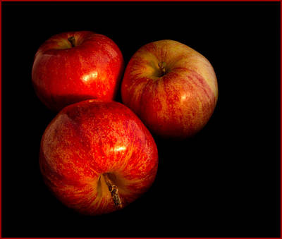 Reflection Harvest Photograph - Apple Trio by Jean Noren