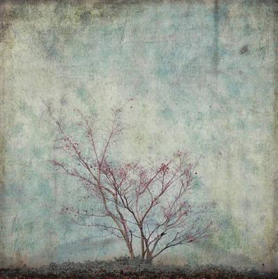 Growth Digital Art - Approaching Spring by Carol Leigh
