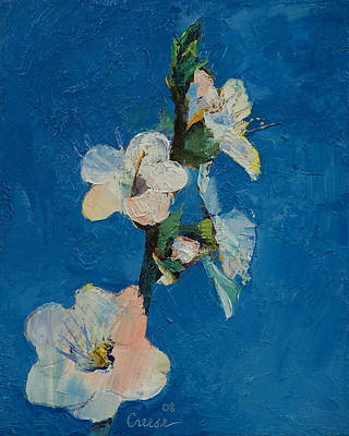 Apricot Painting - Apricot Blossom by Michael Creese