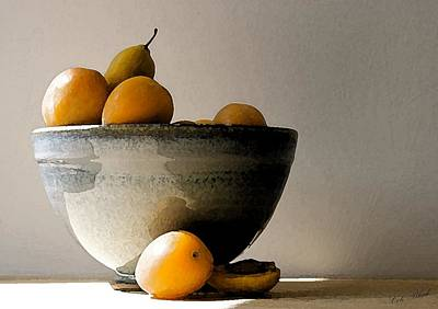 Snack Drawing - Apricot Bowl  by Cole Black