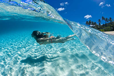 Transparent Photograph - Aqua Dive by Sean Davey