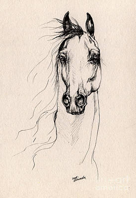 Horse Portrait Drawing - Arabian Horse Drawing 25 by Angel  Tarantella